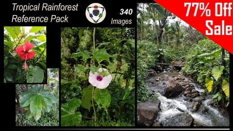 Tropical Rainforest Reference Pack