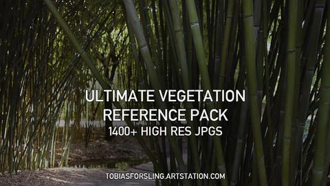Ultimate Vegetation Reference Pack