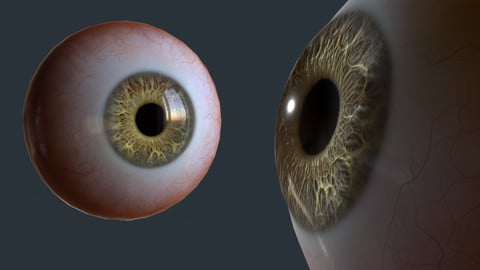 Eye (game ready and presentation)