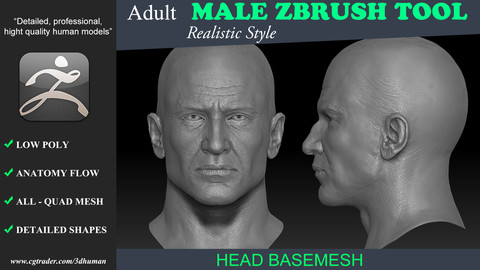 Realistic Male Head 191114
