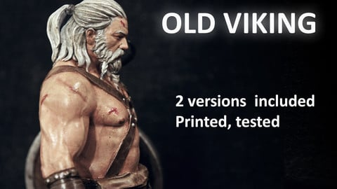 OLD Viking 3D print model