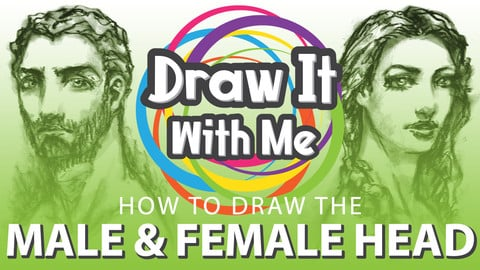 How to Draw the Male & Female Head