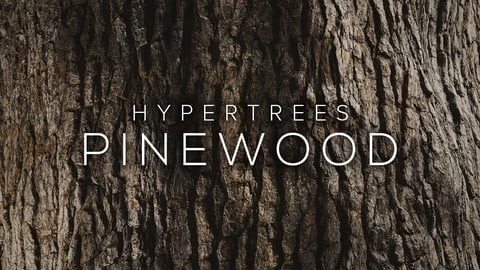 HyperTrees Pinewood Bark - 16K PBR Textures + 3D Scan Collection