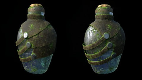 Bottle Corona+Redshift render scenes and Substance Painter files 3D model