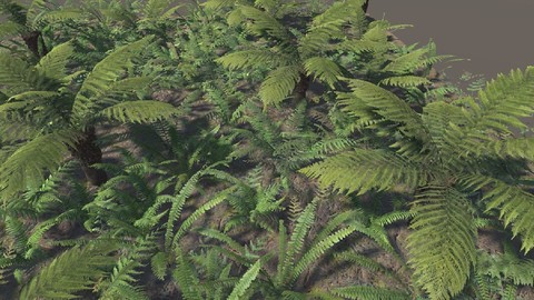 (Unity) The Fern Collection