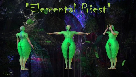 Elemental Priest (3d rig)