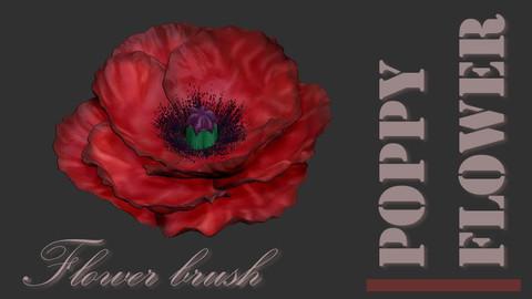 Poppy flower brus for zbrush