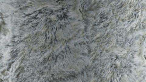 PBR Reindeer Fur 3