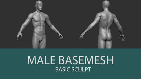 Male Body Basemesh