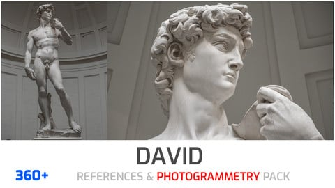 David of Florence Photogrammetry image pack