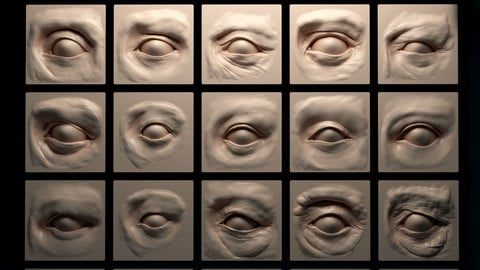 Human Eyes – 20 VDM Brushes
