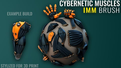 Cybernetic Muscles IMM - Zbrush - Stylized for 3D Print