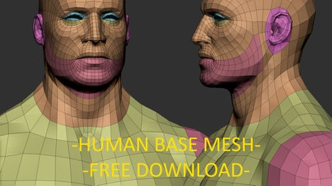 Human base mesh - Free download