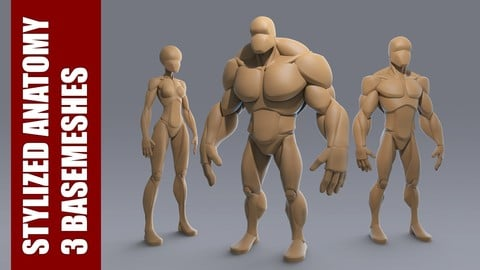 Stylized Anatomy BASEMESHES