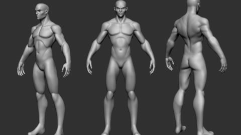 basemesh MEDIUM cartoon Highpoly