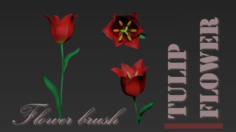 Tulip flower brush for Zbrush