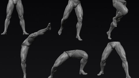 Male Legs 6 Poses