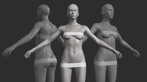 Free Female Base Mesh with subdivisions and clean topology