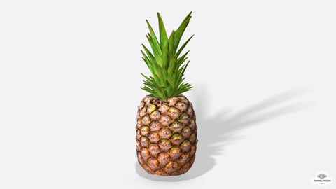 Exotic Fruit Pineapple - Photoscanned PBR