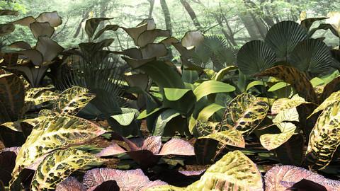 Set tropical plants (12 types)