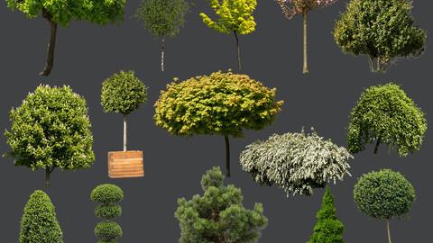 15 TREE & BUSH CUTOUTS in PNG format