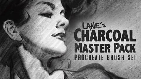 The Charcoal Master Pack - Procreate Brush Set