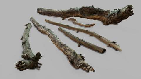 Photogrammetry Sticks