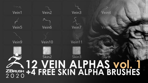 12 Vein Alphas + 4 Free Skin Alpha Brushes vol. 1