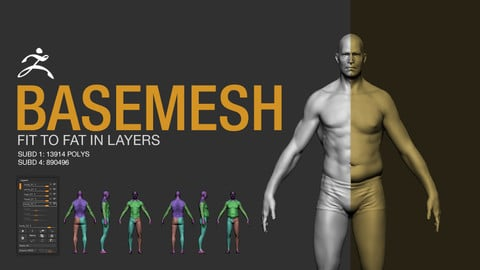 Basemesh - Fit to Fat