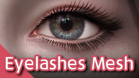 Eyelashes Mesh (Female)