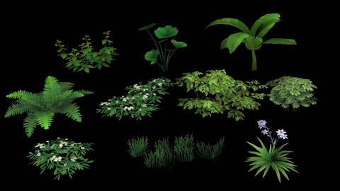 10 Lowpoly Plants pack
