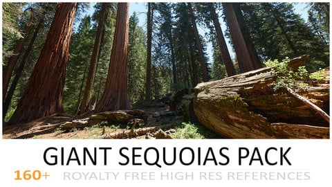 GIANT SEQUOIAS PACK
