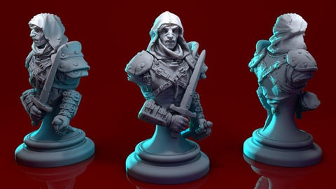 Generic rogue for 3D print