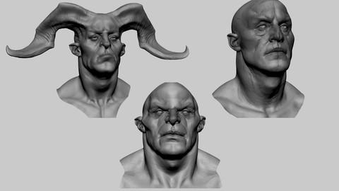 Creature Head Studies