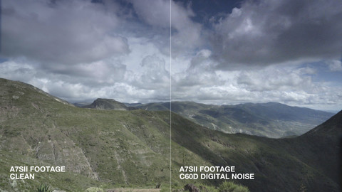 Canon 60D Digital Noise Pack - by Blauw Films