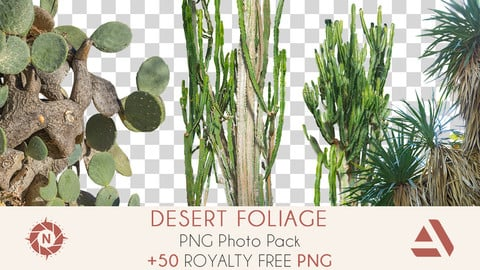 PNG Photo Pack: Desert Foliage