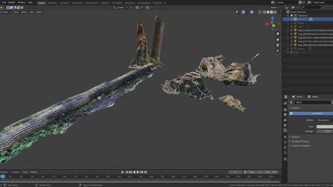 Tree stumps - hi-res photoscanned models