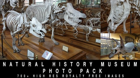 Museum of Natural History Photo Pack