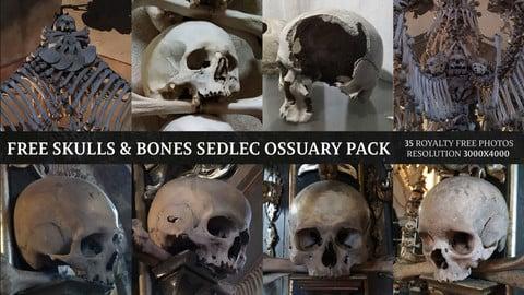 Skulls & Bones - Sedlec Ossuary Free  Pack