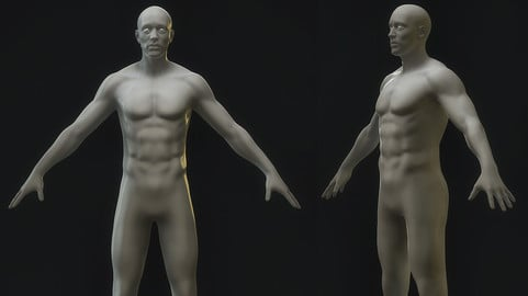 Base Starter Sculpt Male
