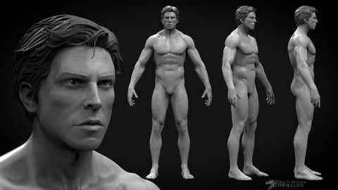 Production Ready Male BaseMesh and Zbrush Sculpt