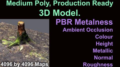 Tree Stump - Medium Poly - Production Ready - 3D Model - PBR Metalness Maps.