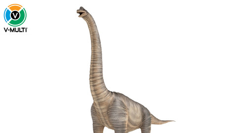 3D Model: Brachiosaurus