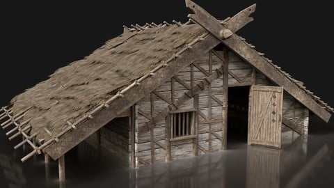 Viking Basic House Cottage Hut Northern Village Next Gen AAA VR