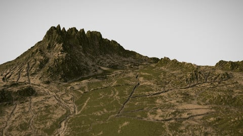 Mossy Landscape