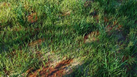 High Details Grass Vol_02