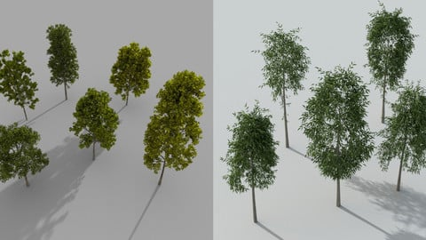 High poly trees