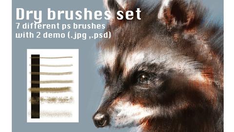 Dry brushes set