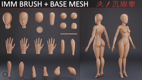 CARTOON BODY PARTS IMM BRUSH v2 + BASE MESH
