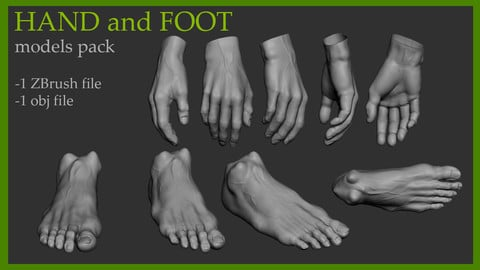 Hand and Foot model